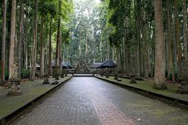 Sangeh Monkey Forest (sumber foto : www.indonesia-tourism.com)